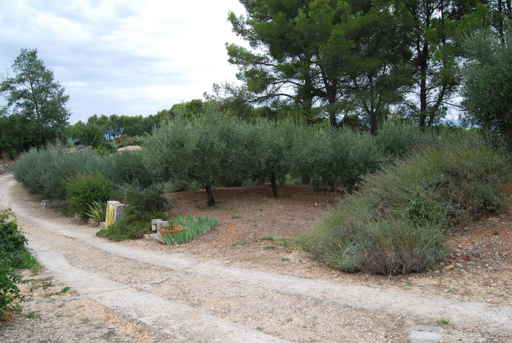 Image_13, Maison / villa, Le Beausset, ref :3126