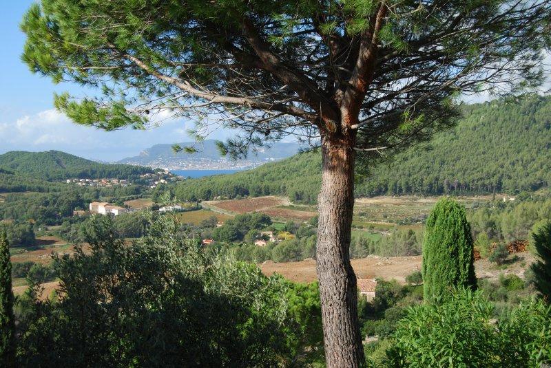 Image_10, Maison / villa, Bandol, ref :3138
