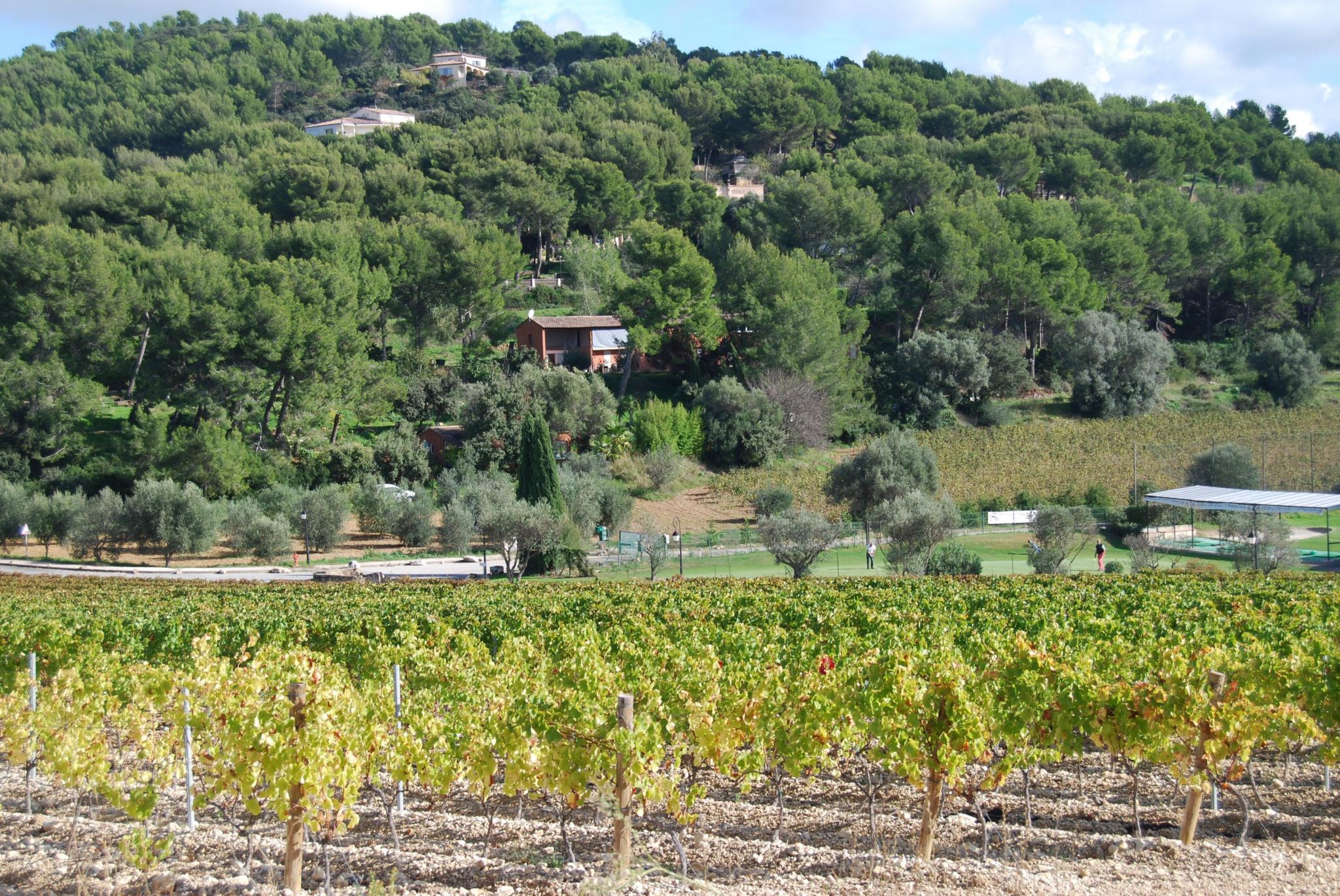 Image_9, Maison / villa, Bandol, ref :3138