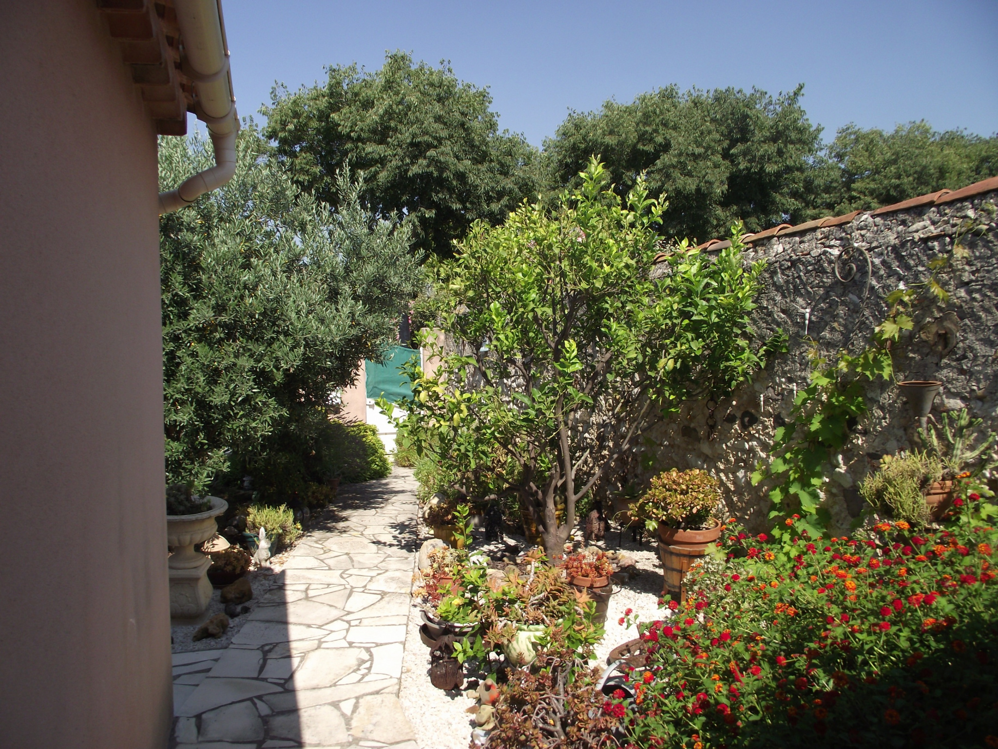 Image_2, Maisons / villas, Ollioules, ref :3134
